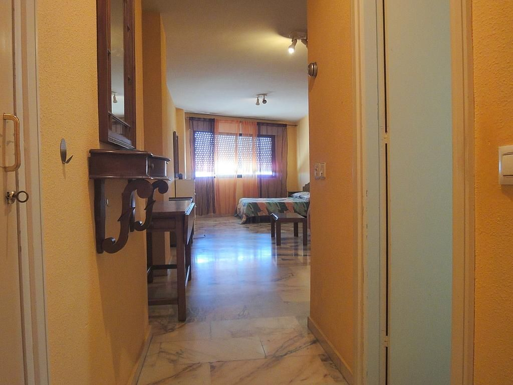 Pasillo - Estudio en alquiler en calle Avd Alcalde Luis de Uruñuela, Av. Ciencias-Emilio Lemos en Sevilla - 146409578