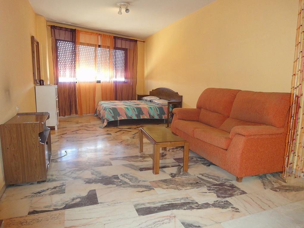 Comedor - Estudio en alquiler en calle Avd Alcalde Luis de Uruñuela, Av. Ciencias-Emilio Lemos en Sevilla - 146409672