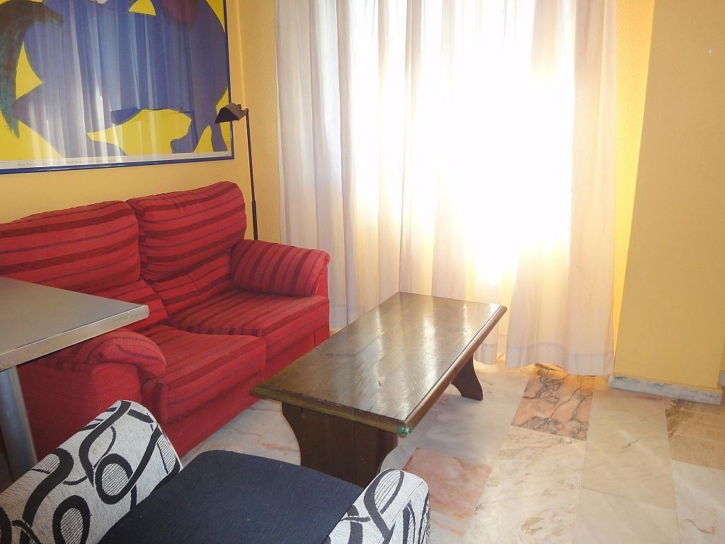 Salón - Estudio en alquiler en calle Alcalde Luis de Uruñuelas, Av. Ciencias-Emilio Lemos en Sevilla - 153973142