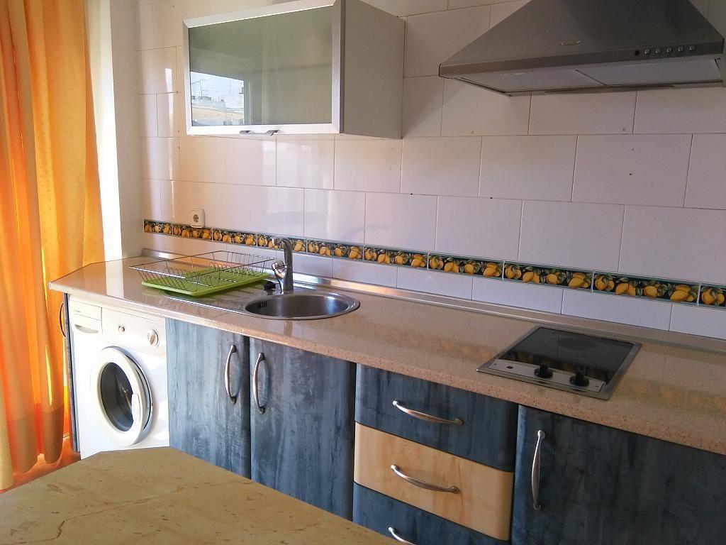 Cocina - Apartamento en alquiler en Nervión en Sevilla - 195367055