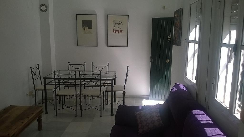 Salón - Piso en alquiler en Santa Cruz en Sevilla - 213077585