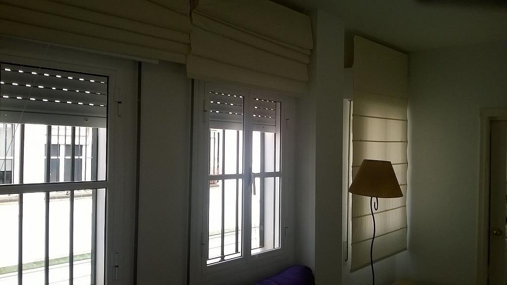 Salón - Piso en alquiler en Santa Cruz en Sevilla - 213077603