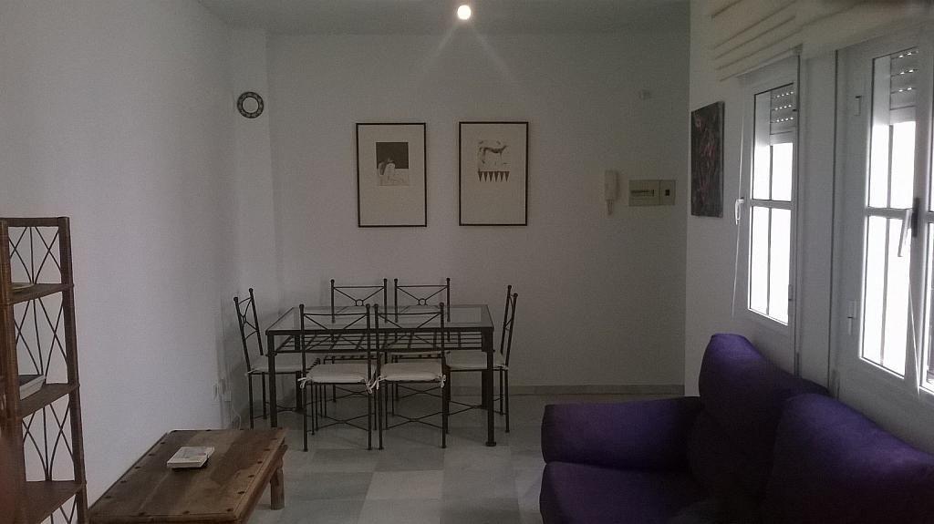 Salón - Piso en alquiler en Santa Cruz en Sevilla - 213077605