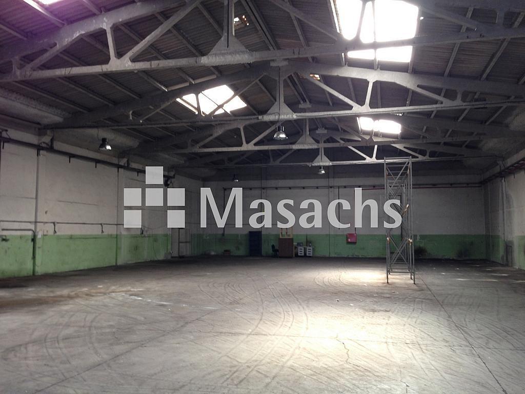 IMG_8340 - Nave industrial en alquiler en Sant Quirze del Vallès - 277941874