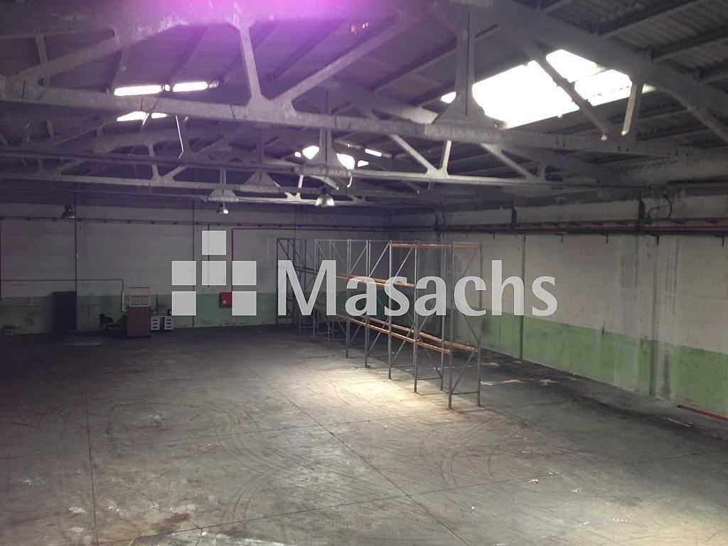 IMG_8342 - Nave industrial en alquiler en Sant Quirze del Vallès - 277941877
