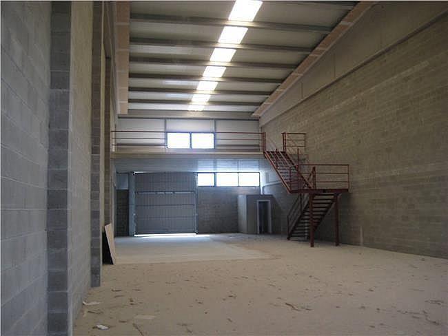 Nave industrial en alquiler en Rodonyà - 305376652