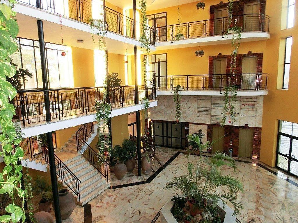 Oficina en alquiler en calle Administrador Gutierrez Anaya, Av. Ciencias-Emilio Lemos en Sevilla - 317590234