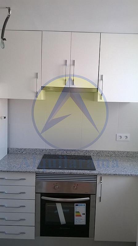 Cocina - Piso en alquiler en barrio Benimaclet, Benimaclet en Valencia - 311242120