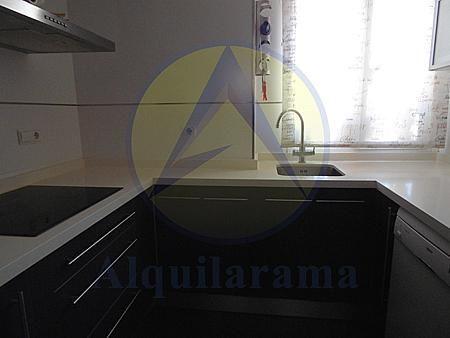 Cocina - Piso en alquiler en barrio Burjassot Godella, Burjassot - 331320146