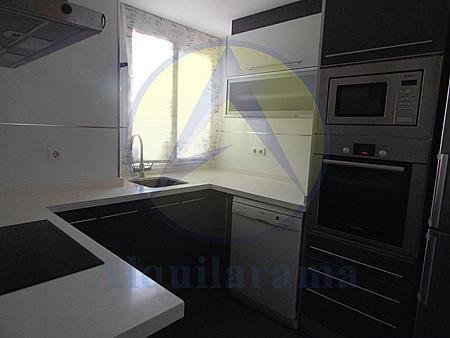 Cocina - Piso en alquiler en barrio Burjassot Godella, Burjassot - 331320147