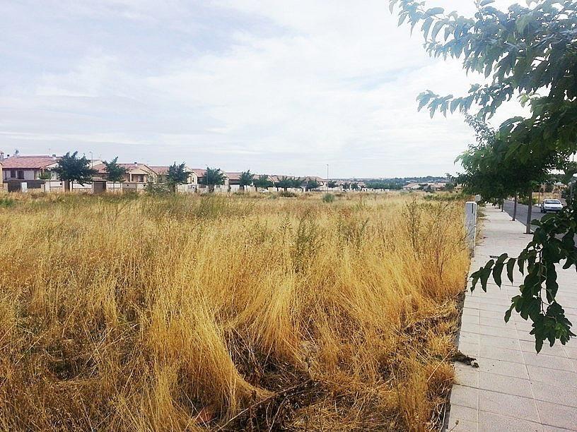 FOTO1 - Terreno en alquiler en calle Pico Otero, Burguillos de Toledo - 371505073