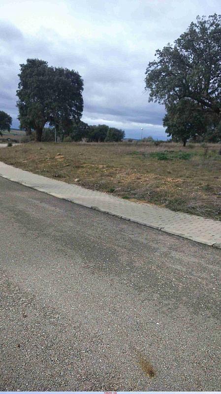 SOLAR4 - Terreno en alquiler en calle Zorita, Villamayor - 370028766