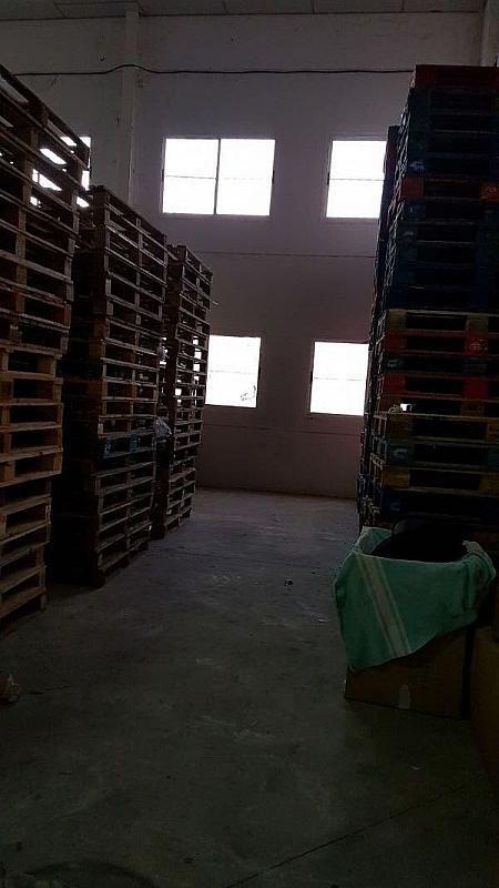 Foto - Nave industrial en alquiler en Albacete - 379931278