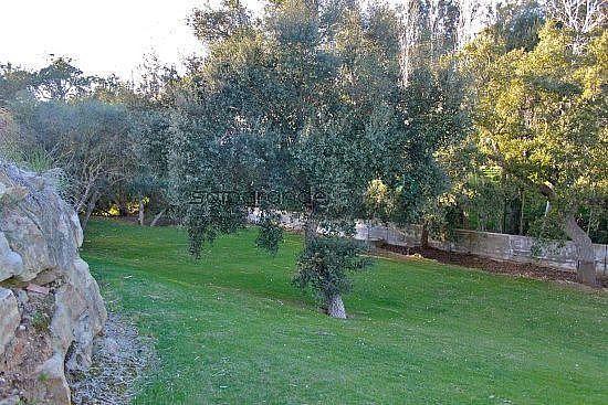 Foto 29 - Villa en alquiler en Sotogrande - 254072753