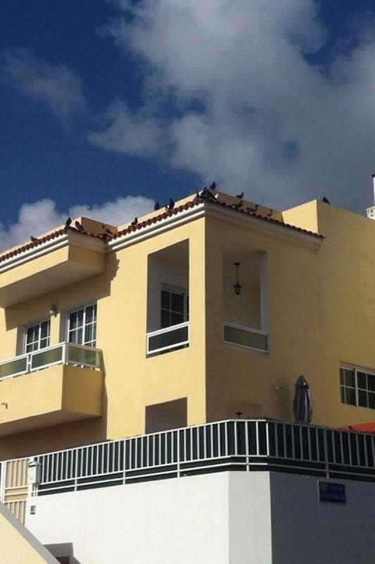 Dúplex en alquiler en calle De la Florida, Ingenio (Agaete) - 307044419