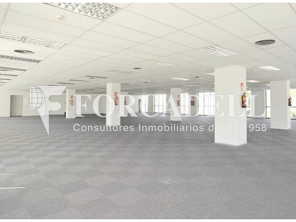 Diapositiva6 - Oficina en alquiler en calle De la Constitució, Sant Just Desvern - 397664733