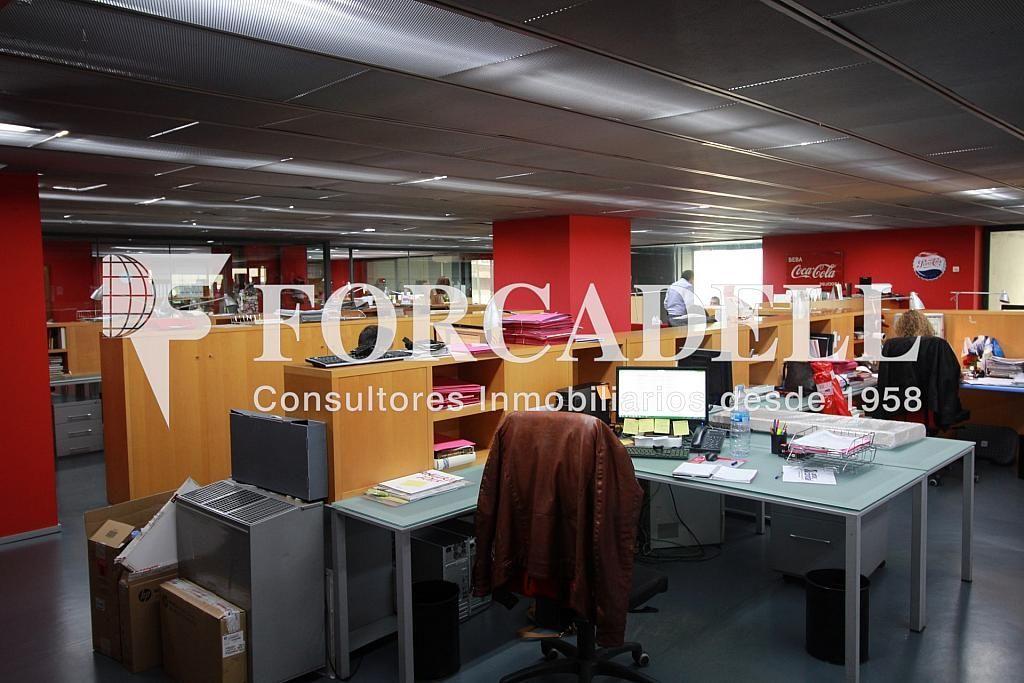 IMG_4334 - Oficina en alquiler en calle Pujades, El Parc i la Llacuna en Barcelona - 263455695