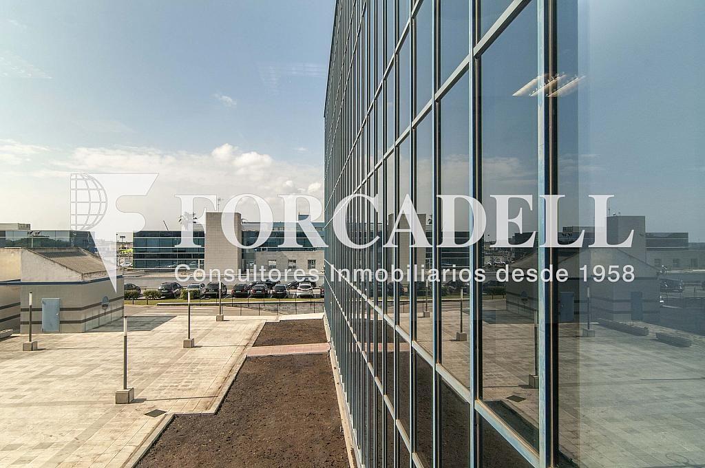 _DSC9006 - Oficina en alquiler en calle Garrotxa, Prat de Llobregat, El - 263456133