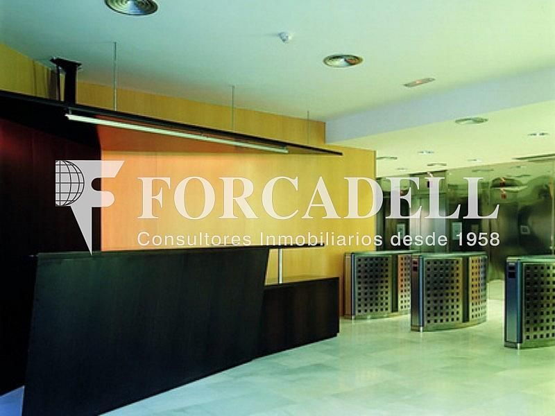 HALL-ENTRADA - Oficina en alquiler en calle Diagonal El Dau, Les corts en Barcelona - 263456646