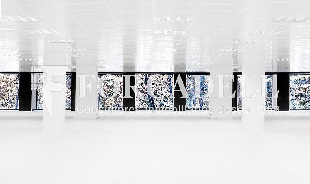 Panoramica oficinas - Oficina en alquiler en calle Diagonal El Dau, Les corts en Barcelona - 358677170