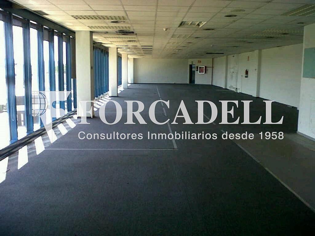 IMG00192-20120426-1536 - Oficina en alquiler en calle Garrotxa, Prat de Llobregat, El - 263424210