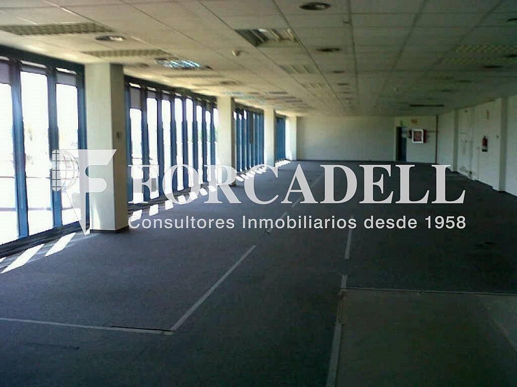 IMG00193-20120426-1537 - Oficina en alquiler en calle Garrotxa, Prat de Llobregat, El - 263424213