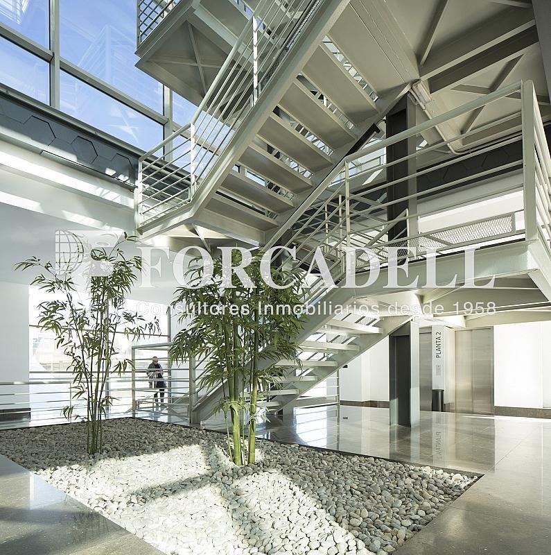 O1A6208 - Oficina en alquiler en calle De Les Corts Catalanes, Sant Martí en Barcelona - 278702243