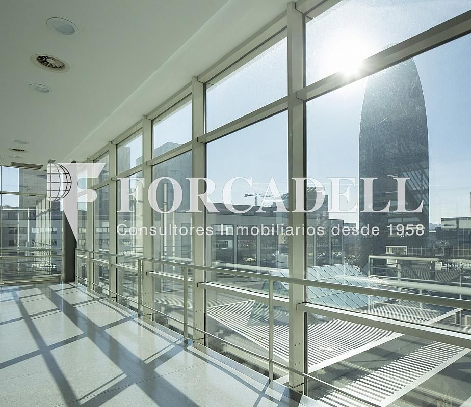 O1A6215 - Oficina en alquiler en calle De Les Corts Catalanes, Sant Martí en Barcelona - 278702246