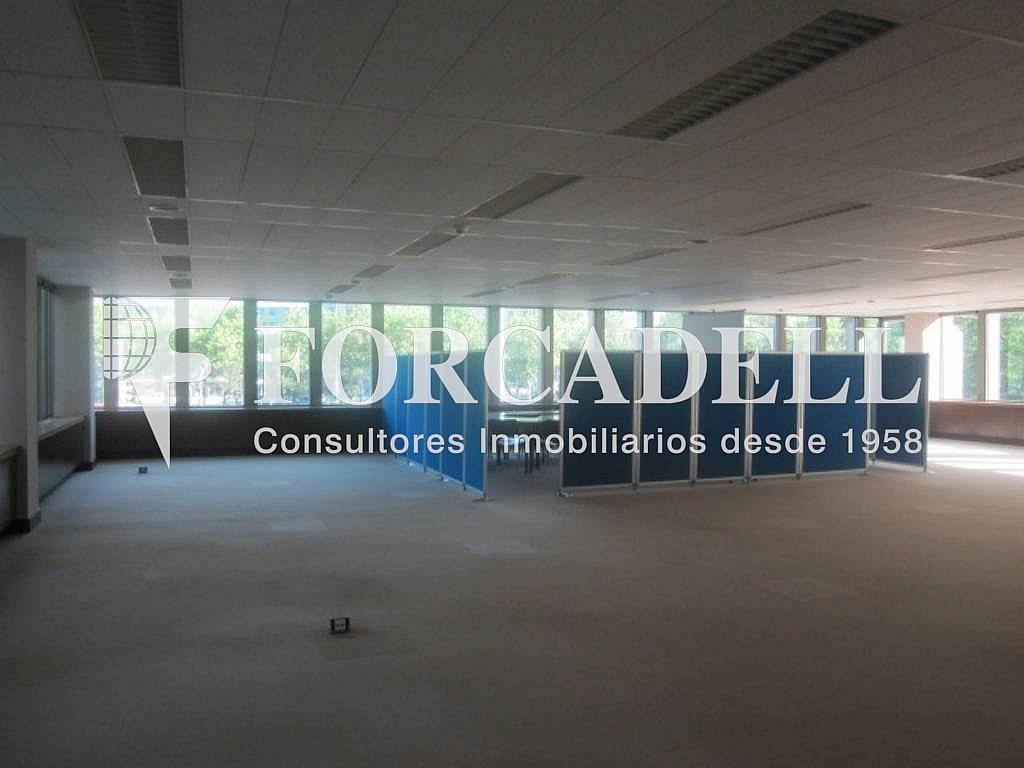 IMG_6647 - Oficina en alquiler en calle Entença, Eixample esquerra en Barcelona - 329736562