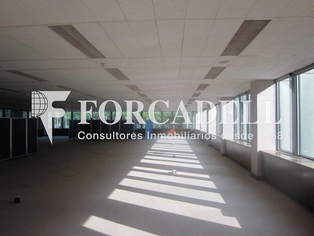 IMG_6646 - Oficina en alquiler en calle Entença, Eixample esquerra en Barcelona - 263429892