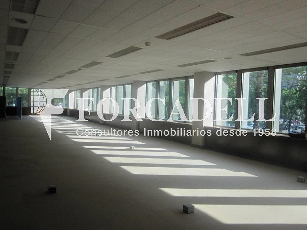 IMG_6652 - Oficina en alquiler en calle Entença, Eixample esquerra en Barcelona - 263429904
