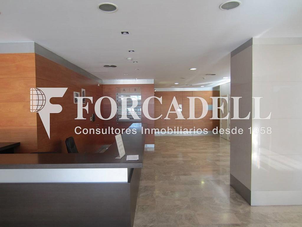 IMG_0200 - Oficina en alquiler en calle Cornellà, Esplugues de Llobregat - 263428104