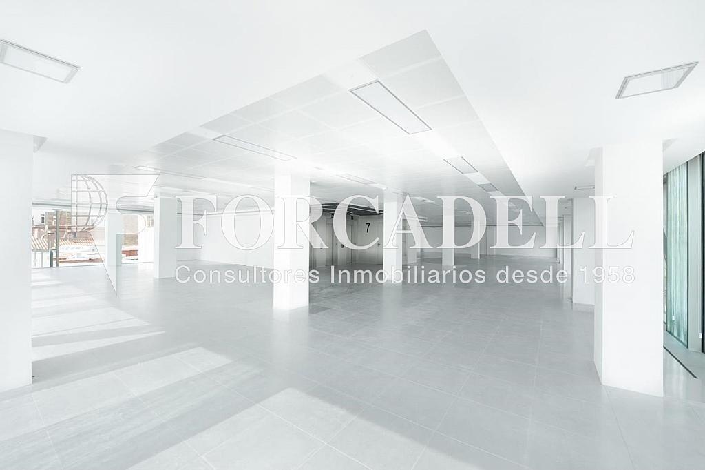 Travessera-de-gracia-amigo-1449735755 - Oficina en alquiler en calle Travessera de Gràcia, Sant Gervasi – Galvany en Barcelona - 380195946