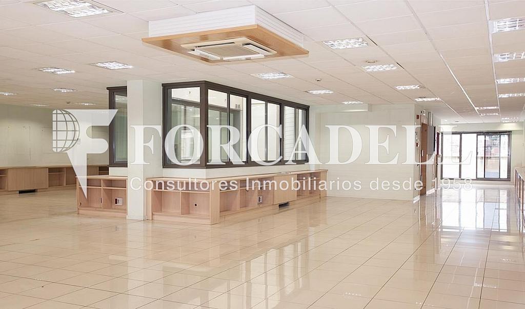 02 - Oficina en alquiler en calle Príncep Dastúries, El Putxet i Farró en Barcelona - 406968963