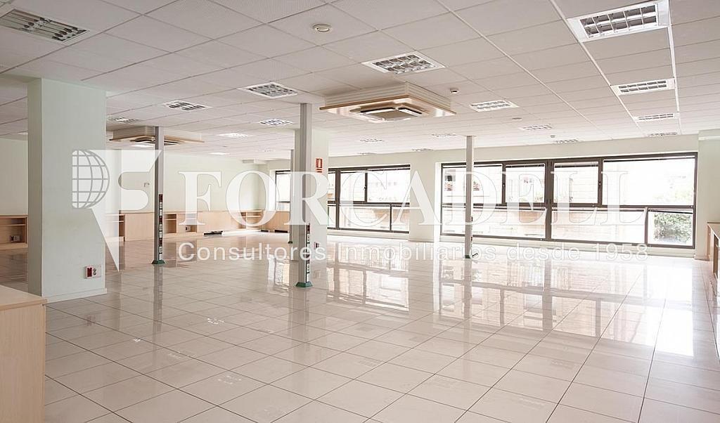 06 - Oficina en alquiler en calle Príncep Dastúries, El Putxet i Farró en Barcelona - 406968981