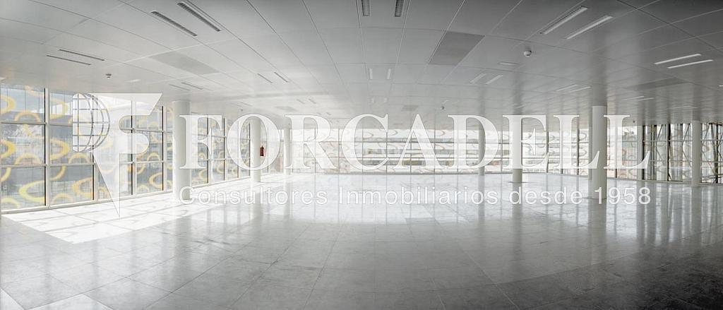 Foto 1 - Oficina en alquiler en parque De la Pau Wtc Almeda Edificio, Cornellà de Llobregat - 263436195