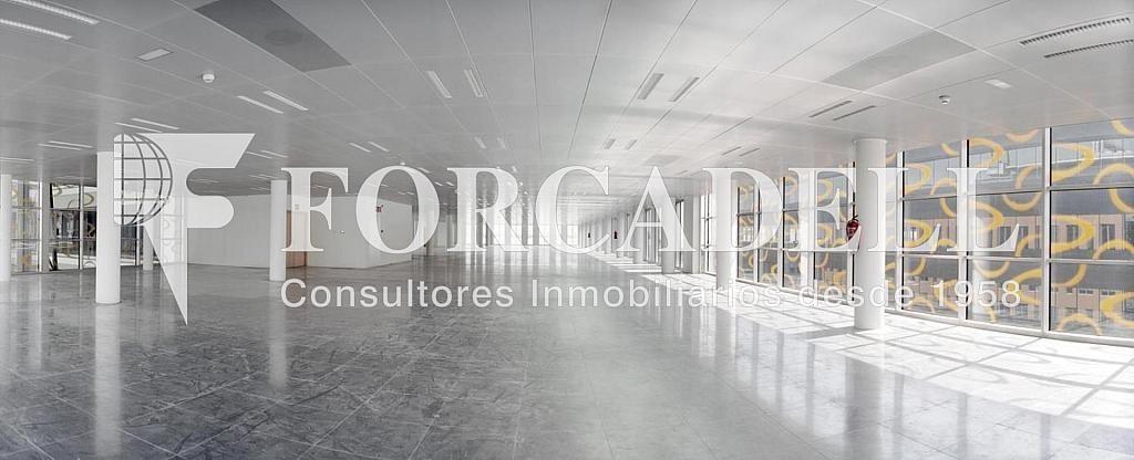 Foto 2 - Oficina en alquiler en parque De la Pau Wtc Almeda Edificio, Cornellà de Llobregat - 263436198