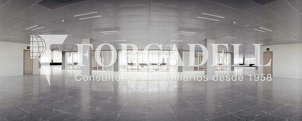 Foto 3 - Oficina en alquiler en parque De la Pau Wtc Almeda Edificio, Cornellà de Llobregat - 263436201