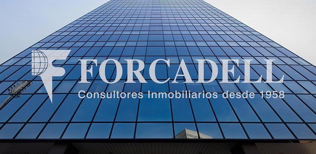 Torre-bcn_0 - Oficina en alquiler en calle Corts Catalanes, La Marina de Port en Barcelona - 393734882