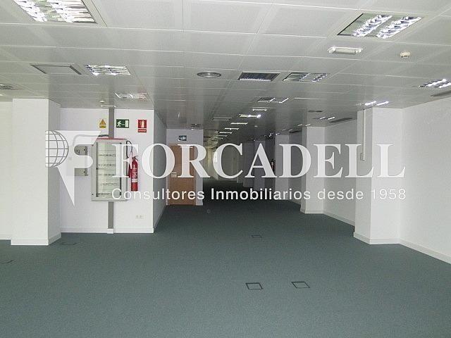 Imagen 045 - Oficina en alquiler en calle Gran Via de Les Corts Catalanes, Sants-Badal en Barcelona - 263427270