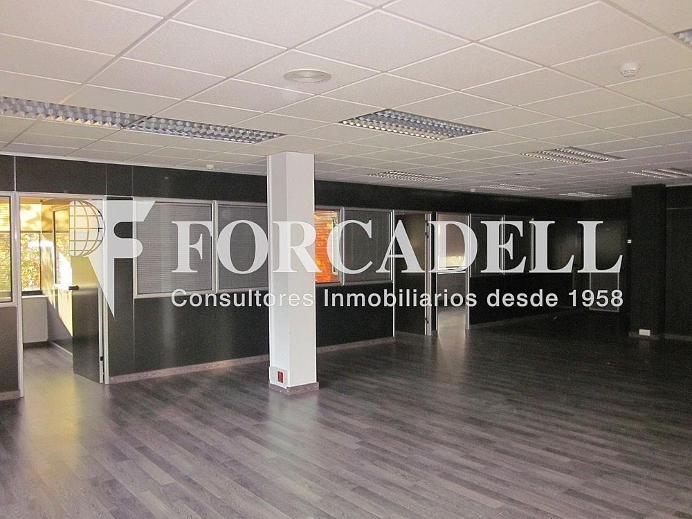 IMG_5491 - Oficina en alquiler en calle Anton Fortuny, Esplugues de Llobregat - 263444328