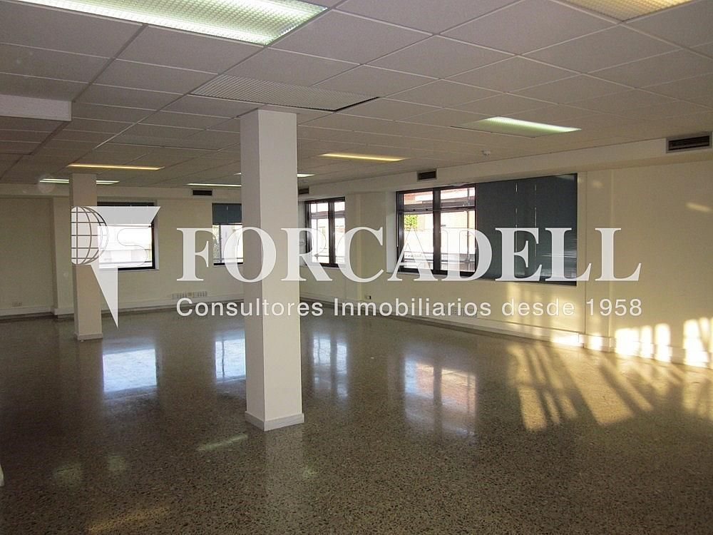 IMG_5504 - Oficina en alquiler en calle Anton Fortuny, Esplugues de Llobregat - 263444331