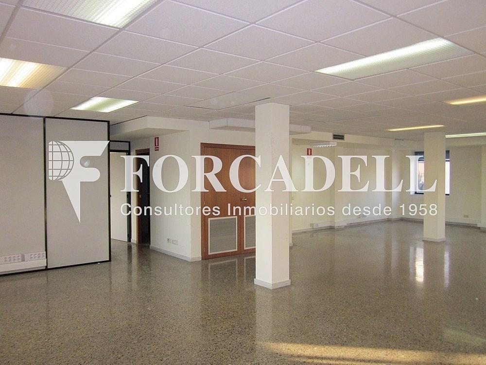 IMG_5506 - Oficina en alquiler en calle Anton Fortuny, Esplugues de Llobregat - 263444334