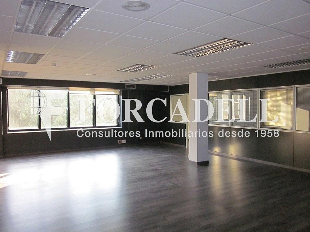 IMG_5487 - Oficina en alquiler en calle Anton Fortuny, Esplugues de Llobregat - 263444340