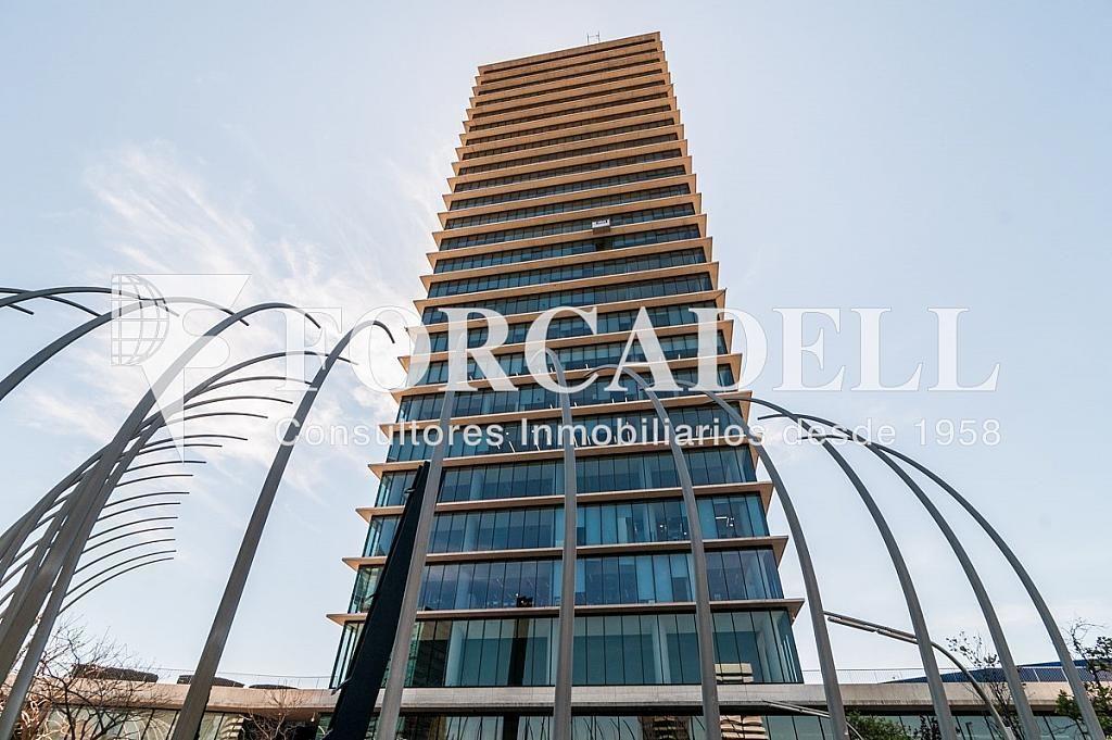 _DSC5745 - Oficina en alquiler en calle Europa Torre Realia, El Gornal en Hospitalet de Llobregat, L´ - 263439357