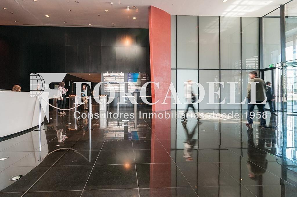 _DSC5740 - Oficina en alquiler en calle Europa Torre Realia, El Gornal en Hospitalet de Llobregat, L´ - 263439363