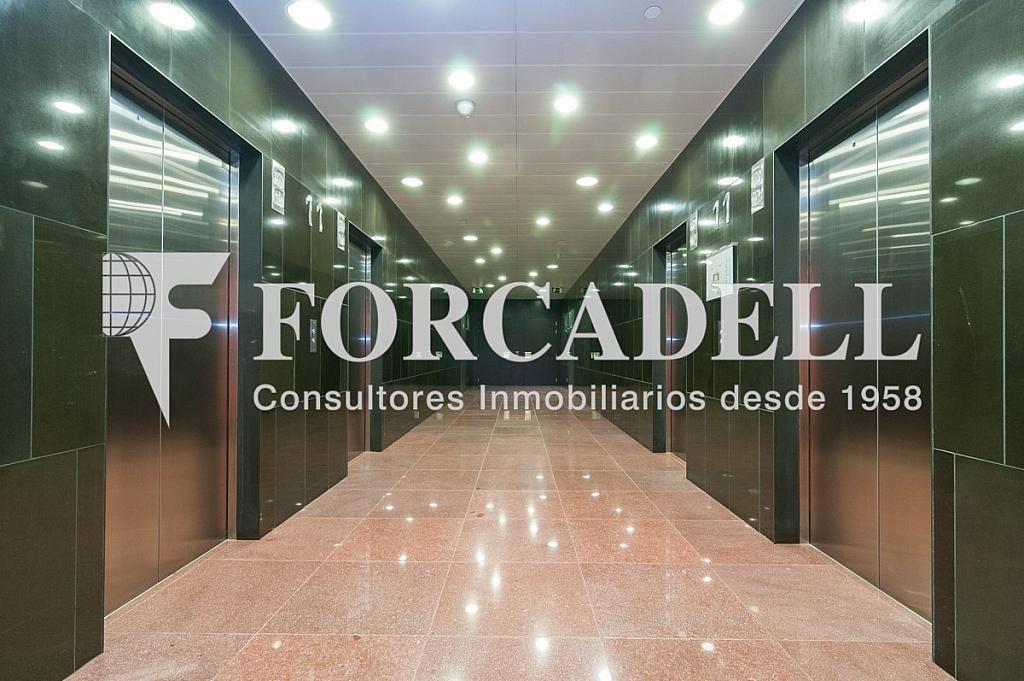 _DSC5657 - Oficina en alquiler en calle Europa Torre Realia, El Gornal en Hospitalet de Llobregat, L´ - 263439366