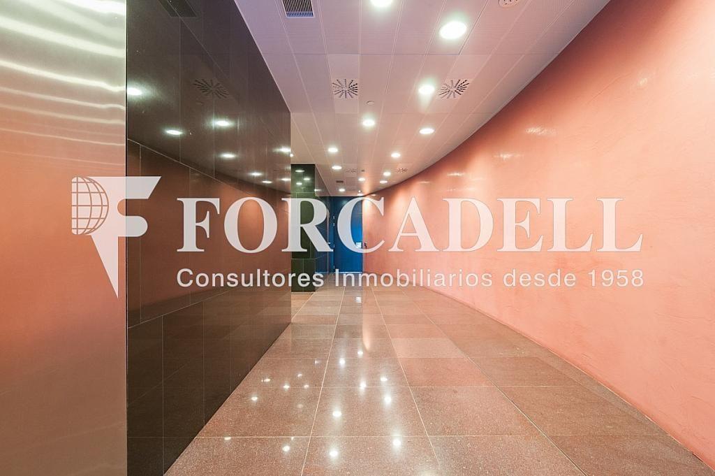 _DSC5648 - Oficina en alquiler en calle Europa Torre Realia, El Gornal en Hospitalet de Llobregat, L´ - 337406915