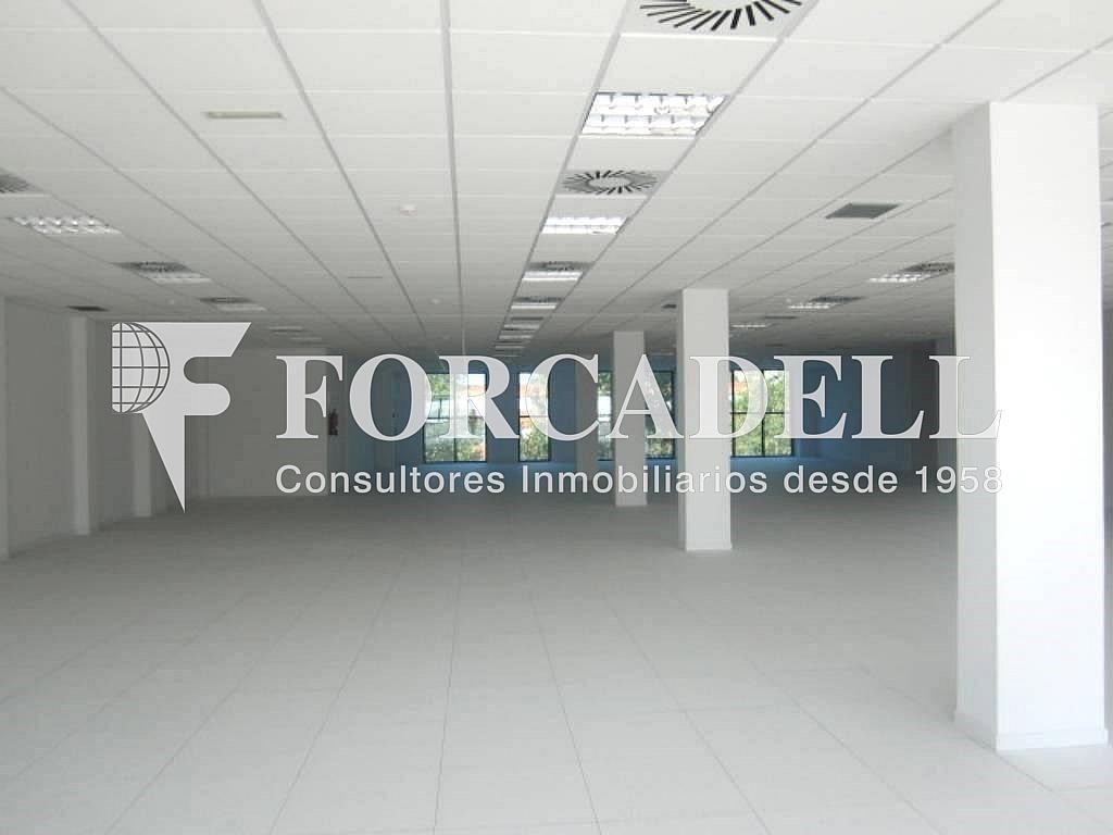 8 - Oficina en alquiler en calle Marina, Centre en Hospitalet de Llobregat, L´ - 263445537