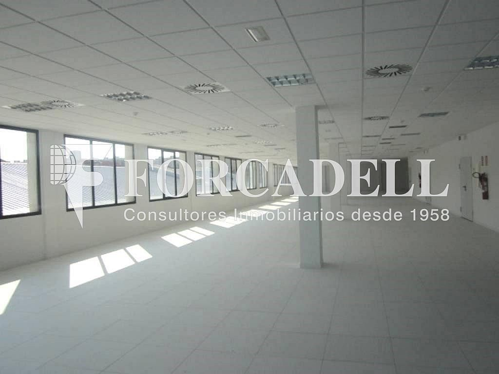 11 - Oficina en alquiler en calle Marina, Centre en Hospitalet de Llobregat, L´ - 263445546